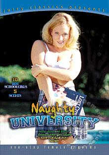 Naughty University Box Cover