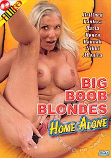 Big Boob Blondes Home Alone Box Cover
