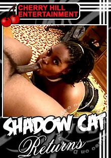 Shadow Cat Returns Box Cover