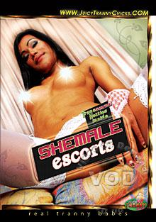 Shemale Escorts Box Cover