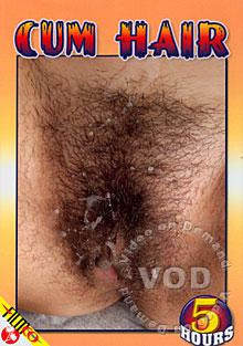 Cum Hair Box Cover