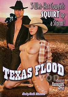 Texas Flood Box Cover