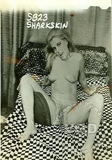 Sharkskin Box Cover