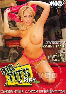 Big Tits At Play Box Cover