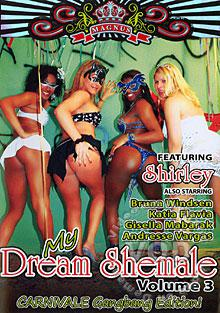 My Dream Shemale Volume 3 - Carnivale Gangbang Edition Box Cover