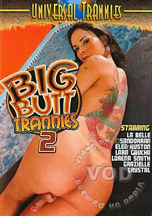 Big Butt Trannies 2 Box Cover