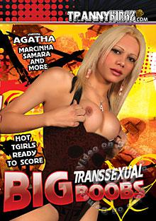 Big Transsexual Boobs Box Cover