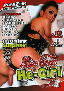 Big Cock He-Girl #3 Box Cover
