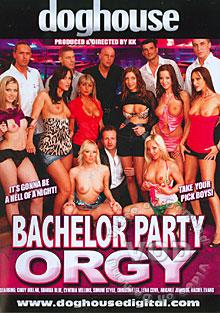 Bachelor Party Orgy Box Cover