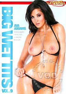 Big Wet Tits 9 Box Cover