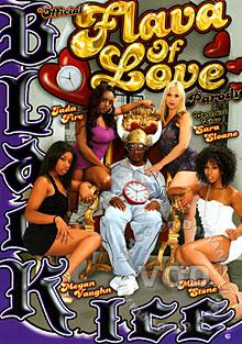 Official Flava Of Love Parody Box Cover