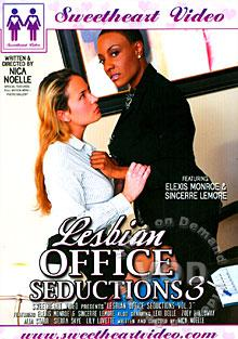 Lesbian Office Seductions 3 Box Cover