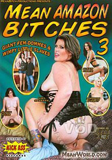 Mean Amazon Bitches 3 Box Cover