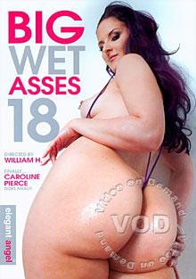 Big Wet Asses 18 Box Cover