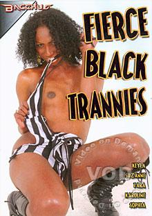 Fierce Black Trannies Box Cover