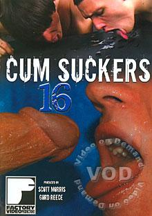 Cum Suckers 16 Box Cover