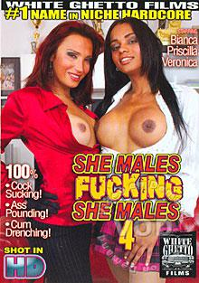 She Males Fucking She Males 4 Box Cover