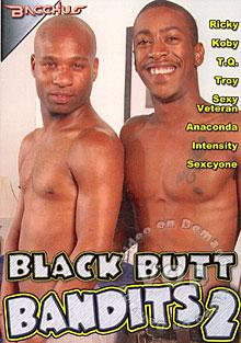 Black Butt Bandits 2 Box Cover