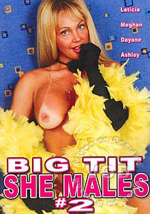 Big Tit She Males #2 Box Cover