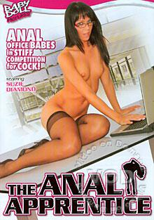 The Anal Apprentice Box Cover