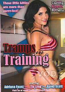Tramps In Training Box Cover