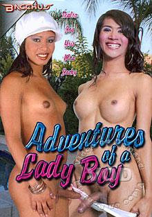 Adventures Of A Lady Boy Box Cover