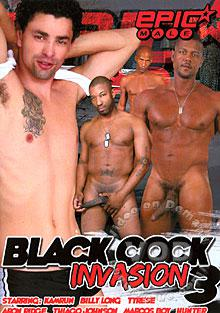 Black Cock Invasion 3