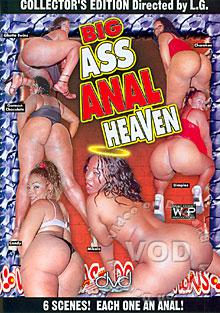 Big Ass Anal Heaven Box Cover
