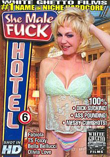 She Male Fuck Hotel 6 Box Cover