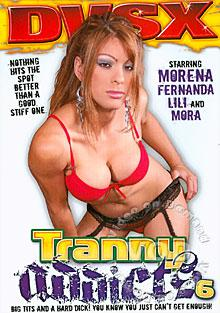 Tranny Addicts 6 Box Cover