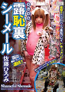 Japanese Naughty Transsexual - Hiromi Sato Box Cover