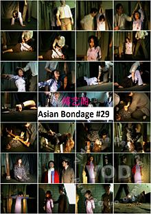 Asian Bondage #29 Box Cover