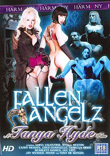 Fallen Angelz Box Cover