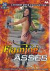 Video: Flaming Asses